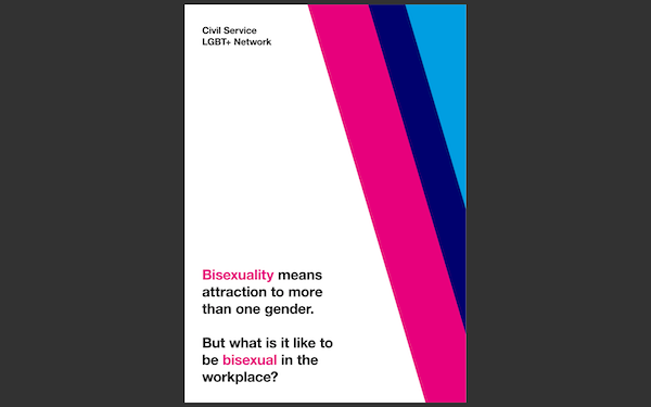 The front cover of the new bisexuality fact sheet
